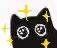 :blackcat_wa: